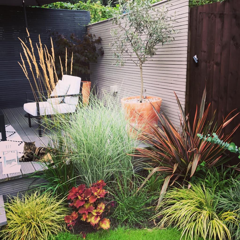 landscaping-8e8690dd-5753-45ea-8419-b3b8136091cf